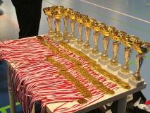 Turniej Żaków 2010 - 12.11.2017